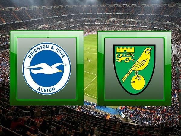 Nhận định kèo Brighton vs Norwich 22h, 2/11 (Ngoại Hạng Anh)